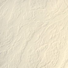 DZ103-C Karton ozdobny skóra kremowa
