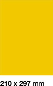 E-325-Z Etykieta 210 x 297 mm żółty