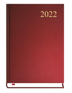 T-237C-V Terminarz Asystent